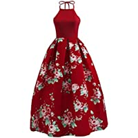 Orangeskycn 2018 New Women Floral Printed Sleeveless Halter Party Evening Beach Long Maxi Dress