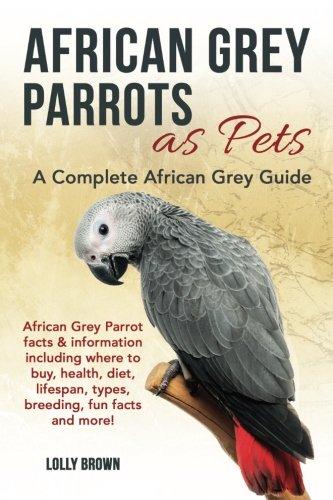 African Grey Parrots Pets - 5