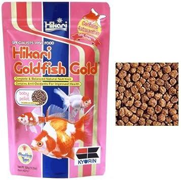 Hikari Goldfish Gold - Alimento completo flotante de pellets para todas las carpas koi y peces rojos