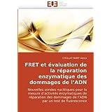 FRET et évaluation de la réparation enzymatique des dommages de l'ADN: Nouvelles sondes nucléiques pour la mesure d'activités enzymatiques de ... par un test de fluorescence (French Edition)
