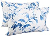Pinzon Signature 190-Gram Cotton Heavyweight Velvet Flannel Pillowcases - Standard, Floral Smoky Blue