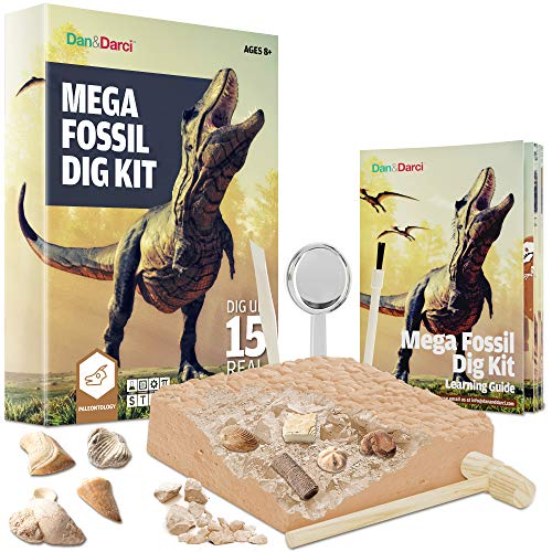 Mega Fossil Dig Kit - Dig Up 15 Real Fossils (Dinosaur Bones, Sharks, & More) - Great Science, Archeology, Paleontology Gift for Boys and Girls - Excavation Toys (Dinosaur Fossil Making Kit)