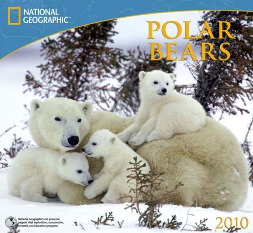 Polar Bears - 2010 National Geographic Wall Calendar (Calendar 2010 Bears)
