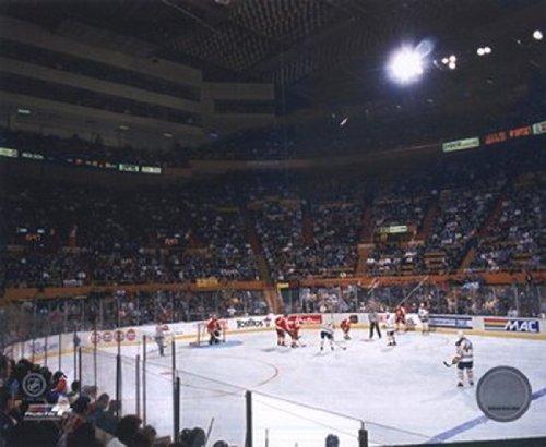 - Buffalo Memorial Auditorium (Sabres) Photo Print (8 x 10)