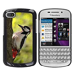 Super Stella Slim PC Hard Case Cover Skin Armor Shell Protection // M00146740 Bird Great Spotted Woodpecker Log // BlackBerry Q10