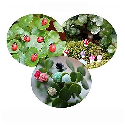 Tophappy 100pcs Miniature Fairy Garden Ornaments Kit Set, Ladybugs,Mushrooms, Flowers with Tools for DIY Fairy Garden Dollhouse Décor: Toys & Games
