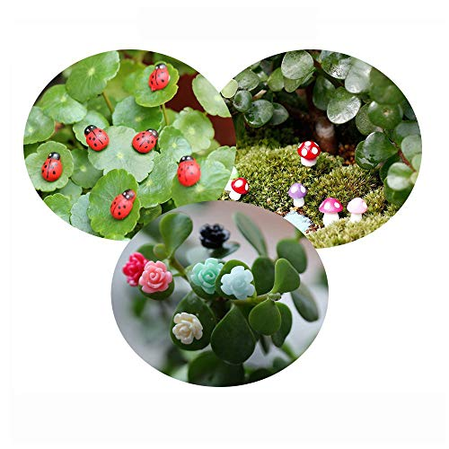 Tophappy 100pcs Miniature Fairy Garden Ornaments Kit Set, Ladybugs,Mushrooms, Flowers with Tools for DIY Fairy Garden Dollhouse Décor Review