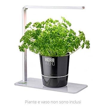 Herb Booster - Lampada a Led per Orto in Cucina: Amazon.de: Garten