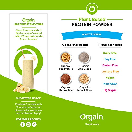 Large Product Image of Orgain Organic Plant Based Protein Powder, Peanut Butter, Vegan, Non-GMO, Gluten Free, 2.03 Pound, 1 Count, Packaging May Vary