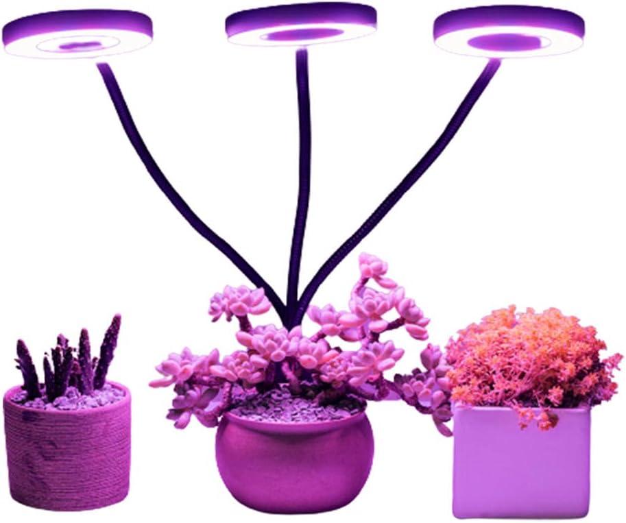Luz de crecimiento de la planta, planta interior Spectrum LED, altura ajustable, Temporizador automático, Safe 5V de bajo voltaje, idea para plantas pequeñas