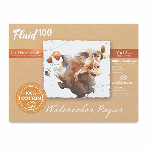 Fluid 100 Watercolor Cp 300Lb Ez-Block 9X12