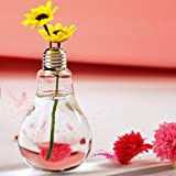 Stand Light Bulb Shape Glass Vase Flower Plant Container Pot Home Garden Decoration