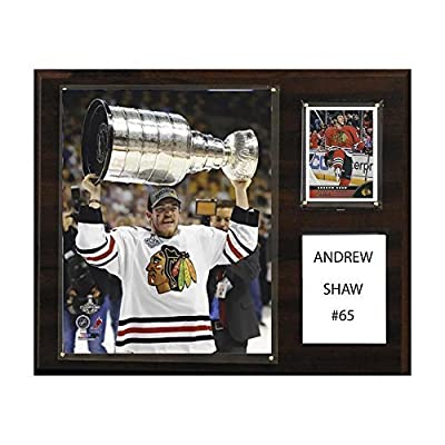 NHL Chicago Blackhawks Andrew Shaw 12 x 15-Inch Player Plaque by C&I Collectables, Inc.