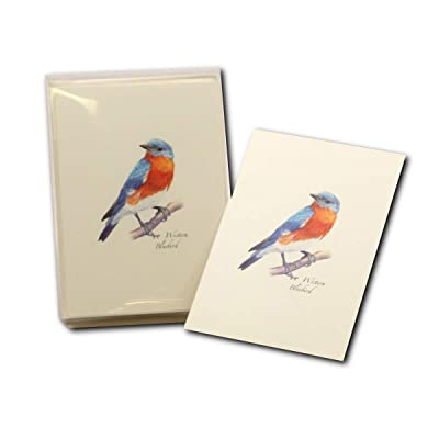 Earth Sky + Water - Western Bluebird Notecard Set - 8 Blank Cards with Envelopes: Toys & Games