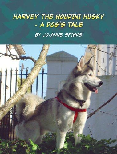 Harvey the Houdini Husky: A Dog's Tale
