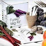 Plant Theatre Funky Veg KIT Gift Box - 5