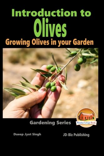 introduction-to-olives-growing-olives-in-your-garden