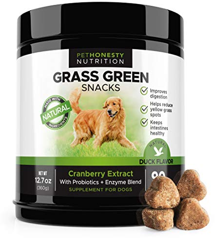 Treat See (PetHonesty GrassGreen Grass Burn Spot Chews for Dogs - Dog Pee Lawn Spot Saver Treatment Caused by Dog Urine - Cranberry, Apple Cider Vinegar, DL-Methionine Grass Treatment Rocks - 90 Chew Treats)