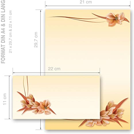 Motivo-set di cancelleria FIORI DI CAMPO Fiori /& Petali Natura 50 fogli di carta da lettera e 50 buste DIN LANG con finestra Paper-Media