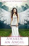 Awaken an Angel: A Paranormal Fantasy (The Otherkin Series Book 1)
