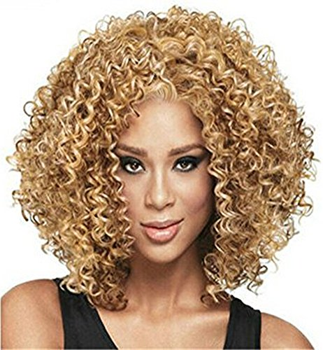 Diy-Wig Afro Curly Hair Wigs For Black Women Blonde Kanekalon Synthetic Heat Resistant Fiber Cosplay Hair Full Wigs (Blonde) by Diy-Wig (Image #1)