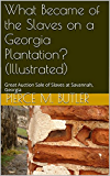 What Became of the Slaves on a Georgia Plantation? (Illustrated): Great Auction Sale of Slaves at Savannah, Georgia