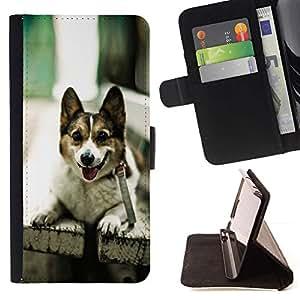 Momo Phone Case / Flip Funda de Cuero Case Cover - Divertido admiten perros en un banco - HTC Desire 820