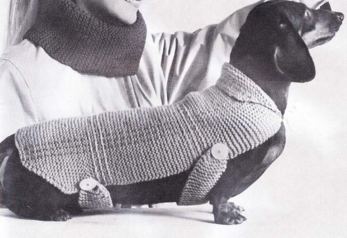 Very Easy Knit Stitch Dachshund Dog Blanket Sweater Coat Knitting