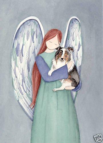 (Blue Merle Sheltie (shetland sheepdog) cradled by angel / Lynch signed folk art print)