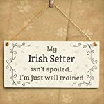 "Meijiafei My Irish Setter Isn't Spoiled I'm Just Well Trained - Beautiful Shabby Chic Style Home Accessory Gift Sign for Irish Setter Dog Owners 10"" x 5"" 6"