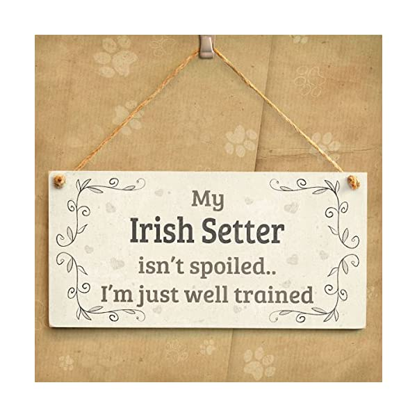"Meijiafei My Irish Setter Isn't Spoiled I'm Just Well Trained - Beautiful Shabby Chic Style Home Accessory Gift Sign for Irish Setter Dog Owners 10"" x 5"" 2"