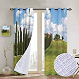 NUOMANAN Bathroom Curtains Tuscan,Landscape Abandoned Farm House Vineyard on Hill Tall Trees Village Path,Green and Pale Blue,Room Darkening Waterproof Curtains for Bathroom 100'x96'
