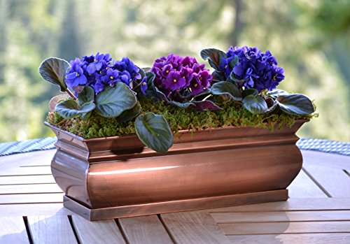 Buy miniature window box