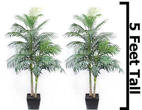 5 Ft Palm Tree Golden Cane Areca Silk Green ( 2 Pack ) Indoor Decor by Silk Road Home