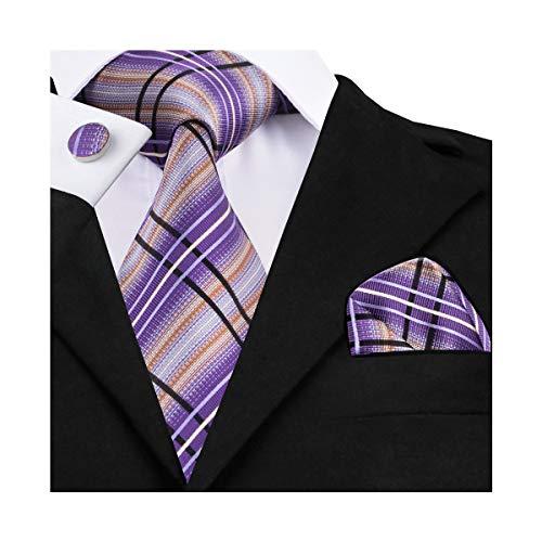 DiBanGu Check Tie Purple Silk Necktie for Men Stripe Tie and Pocket Square Set Tie Clip ()