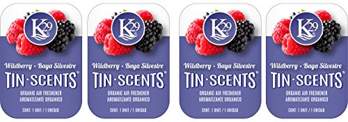 - Sterling Teal ST30624-4 Tin Scents 'Wild Berry' Air Freshener - 1 oz. Scent Control Slider Top Canister, (Pack of 4)