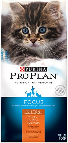 Purina Pro Plan FOCUS Kitten Chicken & Rice Formula Dry Cat Food – (1) 3.5 lb. Bag