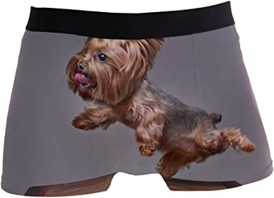 SUABO Men Boxer Briefs Polyester Underwear Men 2 Pack Boxer Briefs for Valentines Day with Dog with Sunglasses Pattern