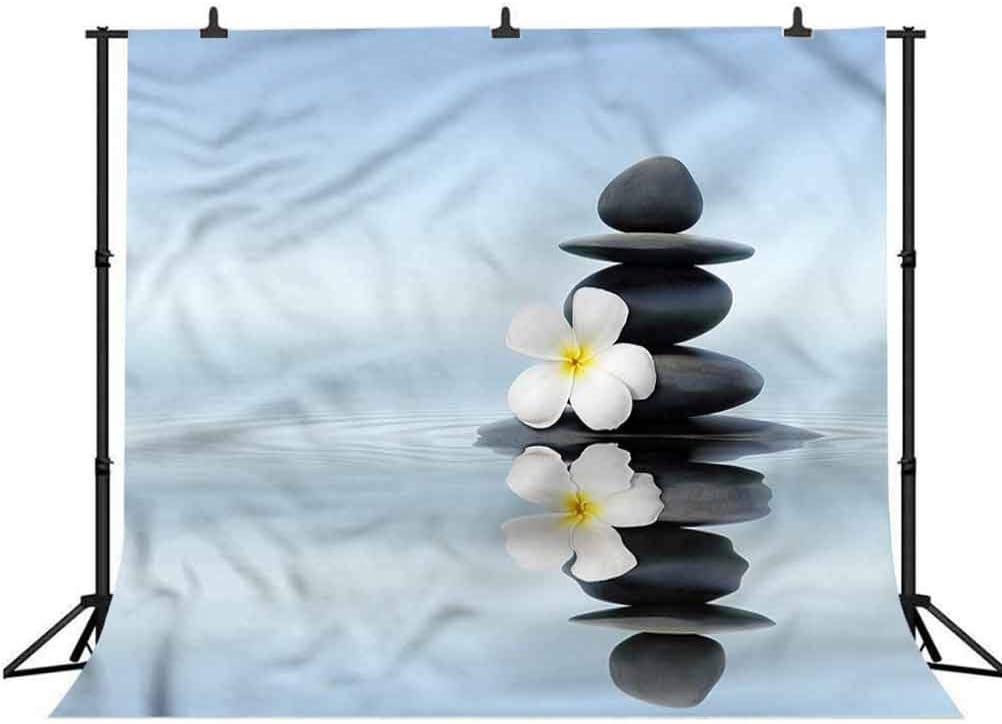Zen Stones Plumeras Photo Background for Photo Booth Studio Props 5x5FT Vinyl Photo Backdrops,Spa