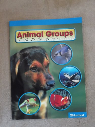 LOVIVER Wild Animal Group Model Card Homeschool Group of Animals Science