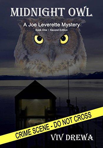 Midnight Owl (Joe Leverette Mystery Series Book 1)