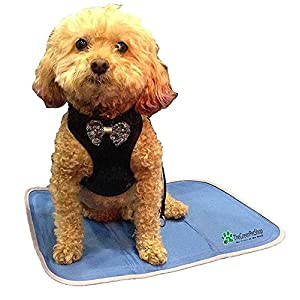 TheGreenPetShop Dog Cooling Mat - Pressure-Activated Gel Cooling Mat for Dogs - This Pet Cooling Mat Keeps Dogs and Cats Comfortable All Summer - Avoid Overheating, Ideal for Home and Travel 24