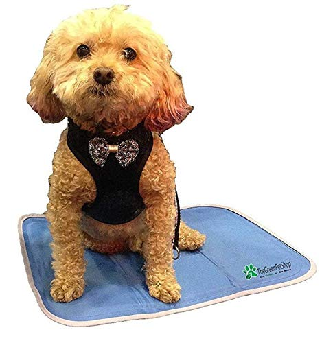 The Green Pet Shop Dog Cooling Mat- Patented Pressure-Activated Cool Gel Pad for Your Dogs and Pets - Help Your Pet Stay Cool This Summer - Chilled Relief to Avoid Overheating, Ideal for Home & Travel, Small