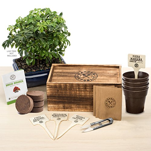Garden Republic Bonsai Starter Kit - 4 Types of Mini Bonsai Tree Seeds, Potting Soil Discs, Recycled Bamboo Pots, Pruning Scissors Tool, Plant Markers, Wood Gift Box, FREE 20 Tips eBook