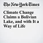 Climate Change Claims a Bolivian Lake, and with It a Way of Life | Nicholas Casey