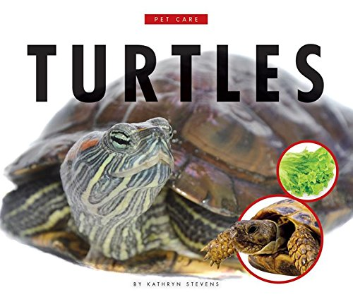 Download Turtles (Pet Care) ebook