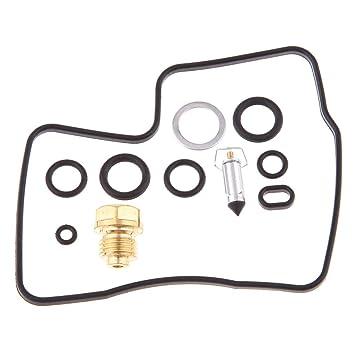 B Blesiya Kit de Reconstrucción de Carburador Hierro Parte Recambio duradero