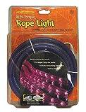 Celebrations Halloween Indoor/Outdoor Rope Lights 18',Purple