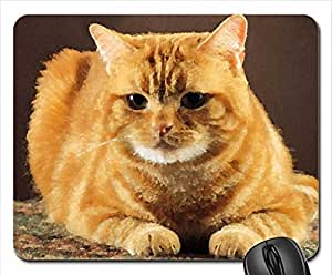 Ginger cat Mouse Pad, Mousepad (Cats Mouse Pad, 10.2 x 8.3 x 0.12 inches)