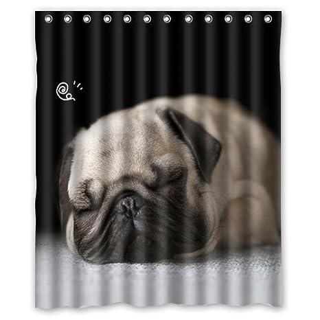 Miel de día casa perro resistente al agua cortina de ducha 60 x 72 elección de regalo: Amazon.es: Hogar